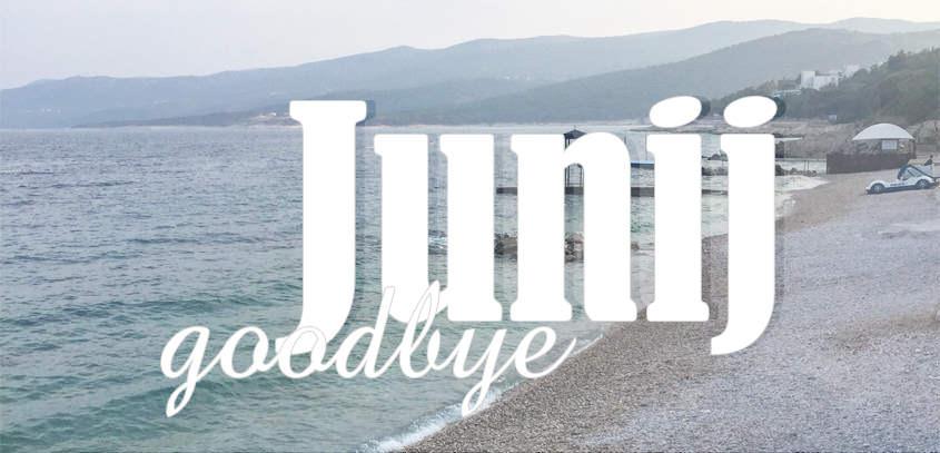 junij-goodby