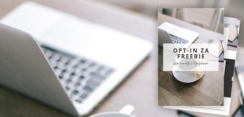 Kako narediš e-mail list za tvoj posel + freebie, kako pošlješ freebie