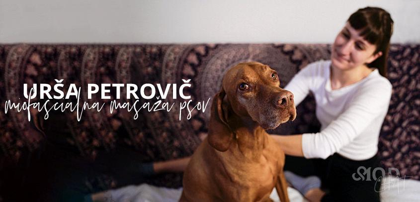 MOD chat: Urša Petrovič, miofascialna masaža psov