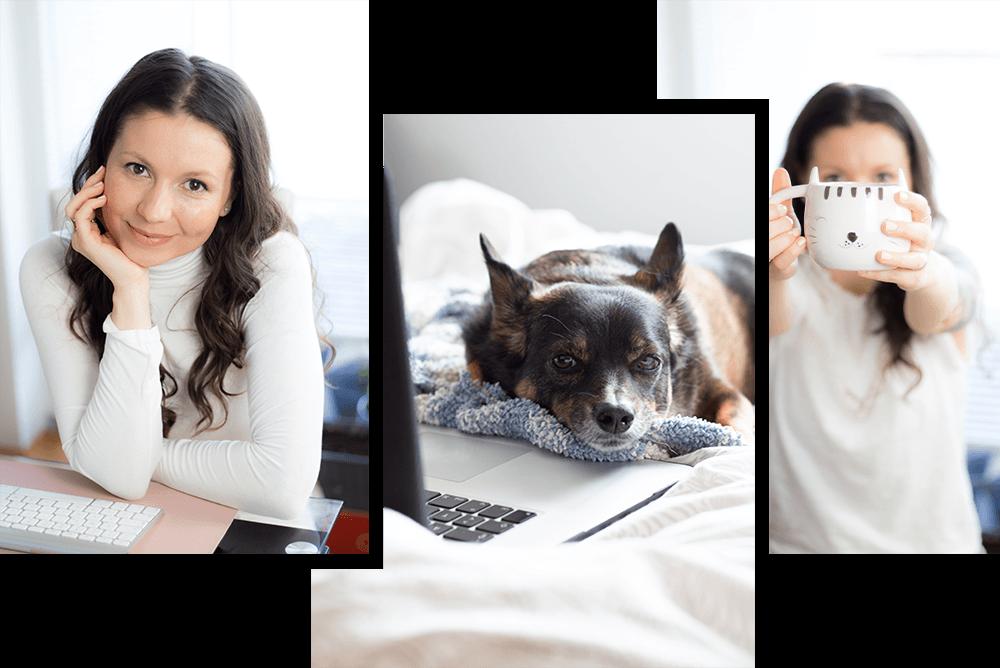Kako narediti spletno stran